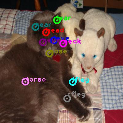2009_003663-cat_0.png