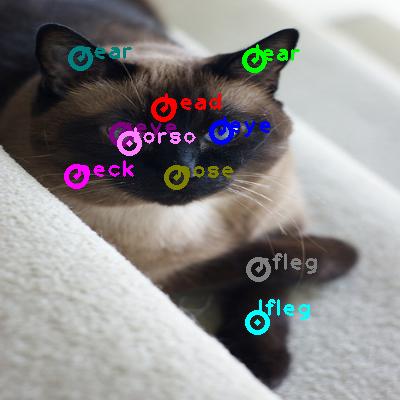 2009_004424-cat_0.png