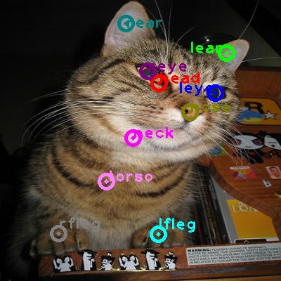 2009_004448-cat_0.png