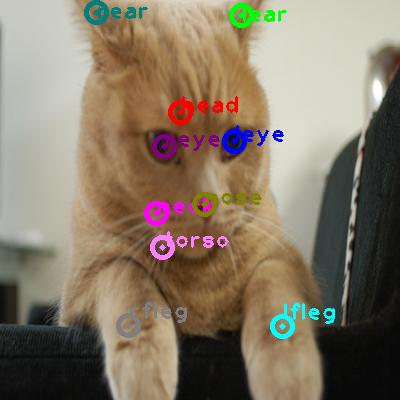 2009_004607-cat_0.png