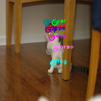 2009_005037-cat_0.png
