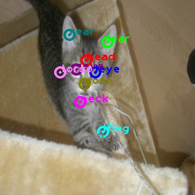 2009_005219-cat_0.png