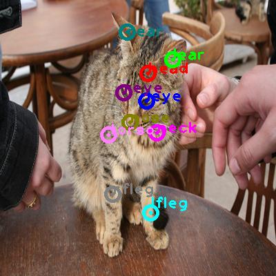 2010_000001-cat_0.png