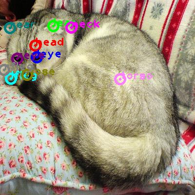 2010_000054-cat_0.png