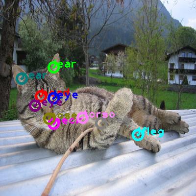 2010_000114-cat_0.png