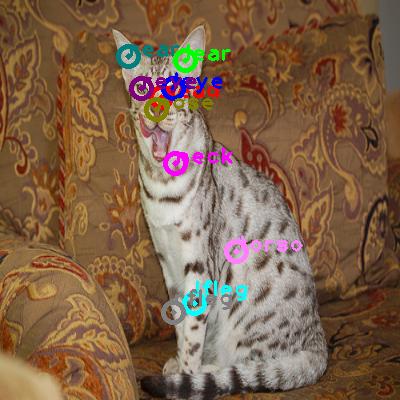 2010_000244-cat_0.png