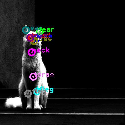 2010_000468-cat_0.png