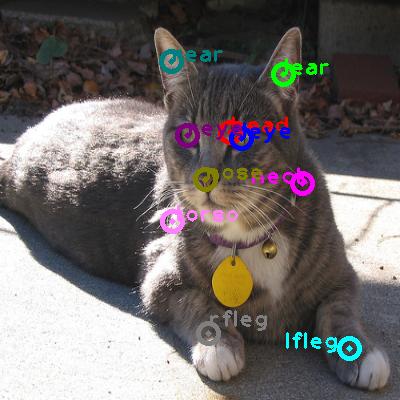 2010_000469-cat_0.png