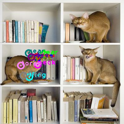 2010_000536-cat_0.png