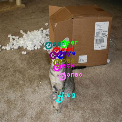 2010_000828-cat_0.png