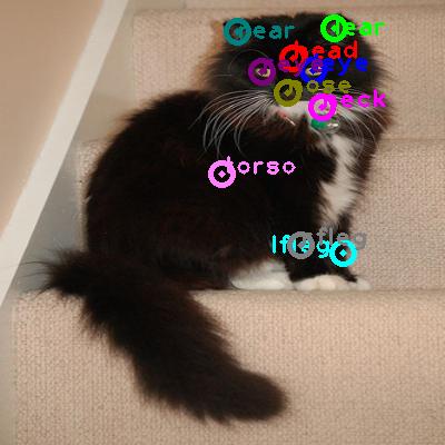 2010_000996-cat_0.png
