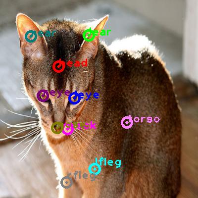2010_001555-cat_0.png