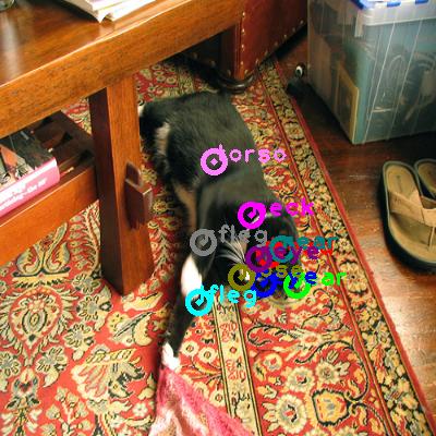 2010_001602-cat_0.png