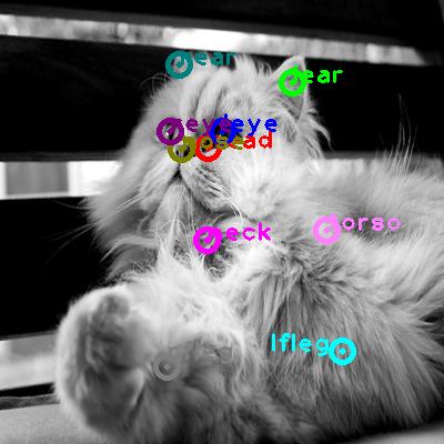 2010_001660-cat_0.png