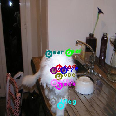 2010_001712-cat_0.png