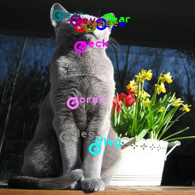 2010_001787-cat_0.png
