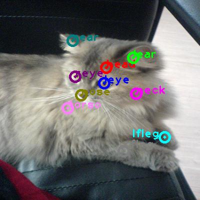 2010_001863-cat_0.png