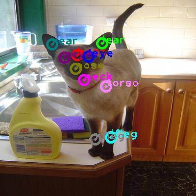 2010_001994-cat_0.png