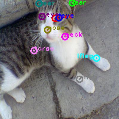 2010_002138-cat_0.png