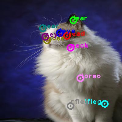 2010_002354-cat_0.png