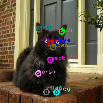 2010_002573-cat_0.png