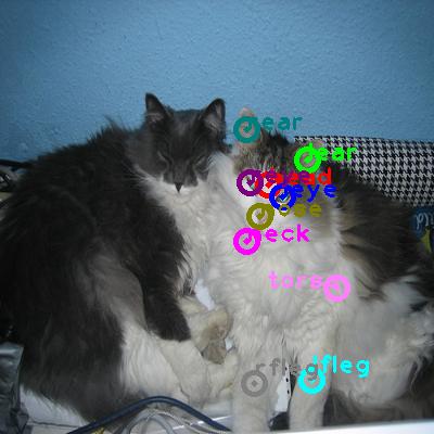 2010_002583-cat_0.png