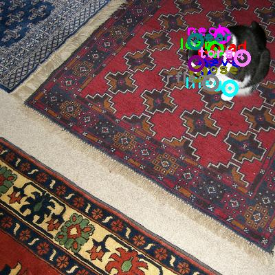 2010_002662-cat_0.png