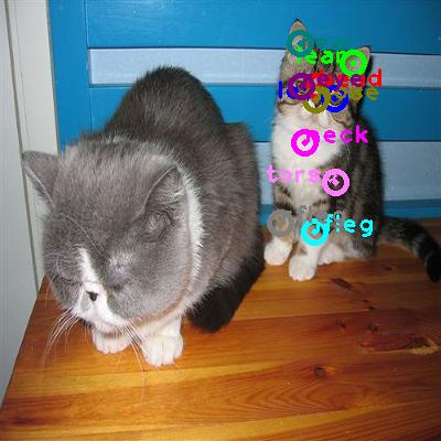 2010_002723-cat_1.png