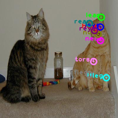 2010_002917-cat_0.png