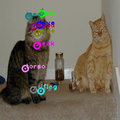 2010_002917-cat_1.png