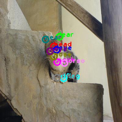 2010_003067-cat_0.png