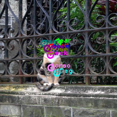 2010_003232-cat_0.png