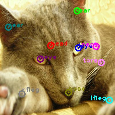 2010_003238-cat_0.png