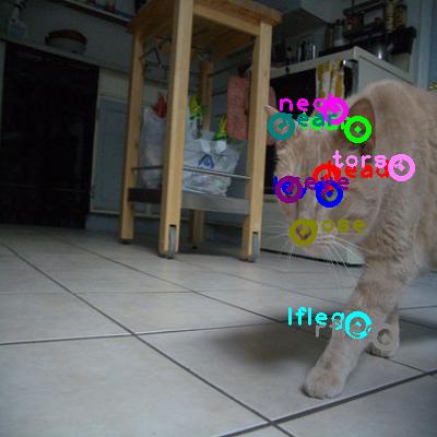 2010_004257-cat_0.png