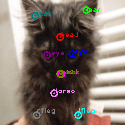 2010_004402-cat_0.png