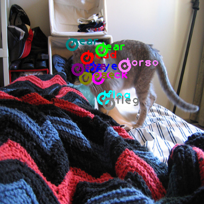 2010_004575-cat_0.png