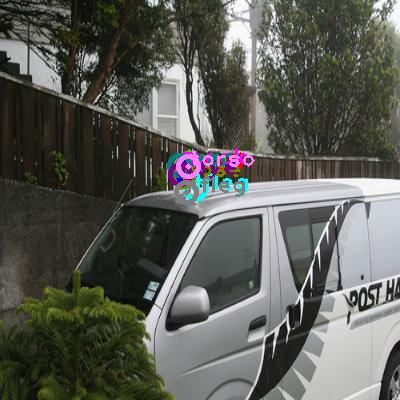 2010_004646-cat_0.png