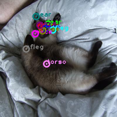 2010_004667-cat_0.png