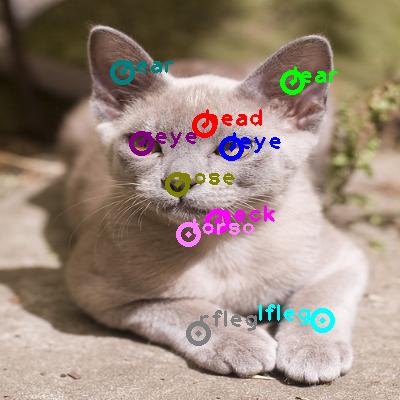 2010_005185-cat_0.png