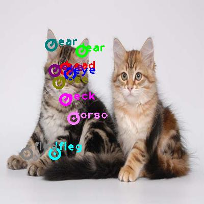 2010_005627-cat_0.png