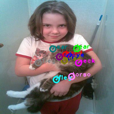 2010_005697-cat_0.png