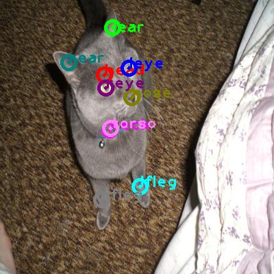 2010_005855-cat_0.png