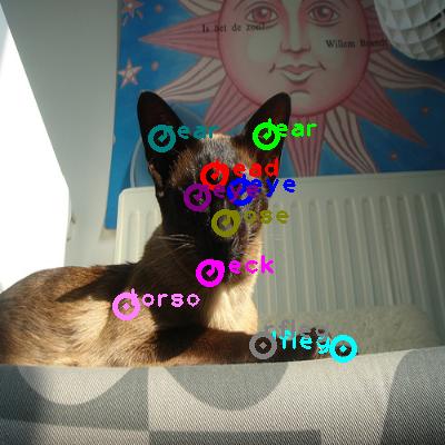 2010_005935-cat_0.png
