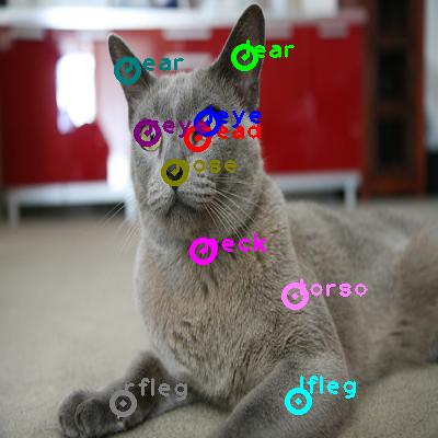 2010_005973-cat_0.png