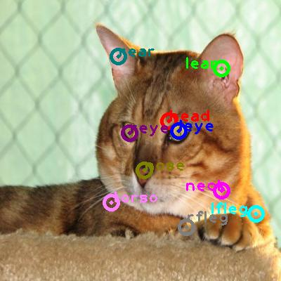 2010_006078-cat_0.png
