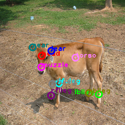 2008_002778-cow_0.png