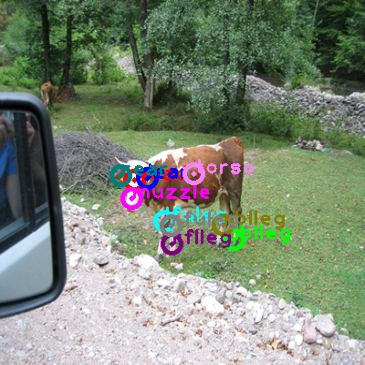2008_003297-cow_0.png