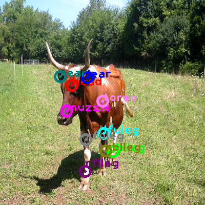 2008_006528-cow_0.png