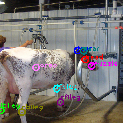 2008_008121-cow_0.png