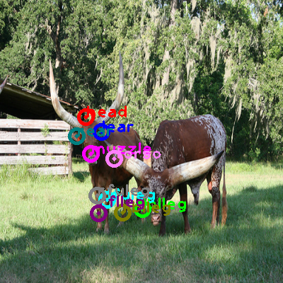 2009_000559-cow_0.png